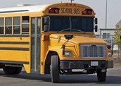 Bus Routes / Transportation