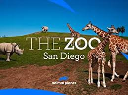 Nature in your Neighborhood Art Contest with SD Zoo: