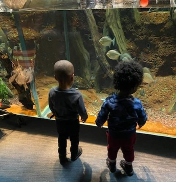 Kaiden and Brandon, both 2 years old, at the Natural Science Museum in Greensboro