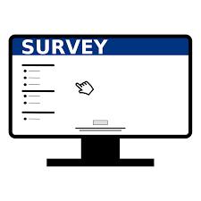 Mr. Shepich Survey