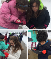 Mrs. Biggs - Scientists in the Snow!