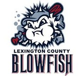 Blowfish Reading Logs