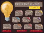 Student Mindset
