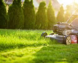 I've mowed it...