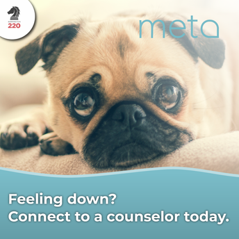 Need someone to talk to? Download the META app.