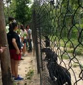 SERVICE TRIP TO CAMBODIA