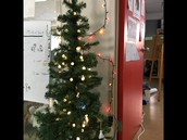 Christmas in the MS Lounge