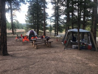 Join us for a Camping-Reading Adventure