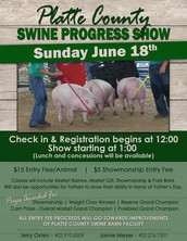 Platte County Swine Progress Show