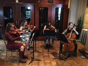Falcon String Quartet in Action