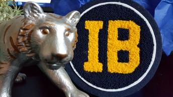 IB Shadowing Registration Link