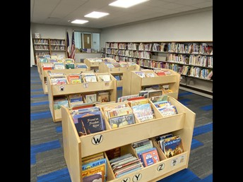 Elementary Book Shelves