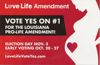 LOVE LIFE AMENDMENT ON NOVEMBER 3RD BALLOT