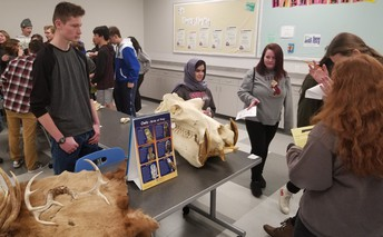Freshmen interact with skulls, pelts, and antlers in Zoology