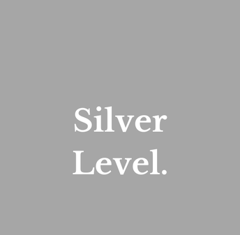Silver Level (meets 4 or more criteria below)