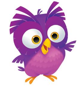 OWL Curriculum