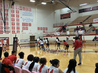 Lady Longhorn Volleyball