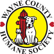 Rachel's Challenge Club holds Donation Drive for Wayne County Humane Society