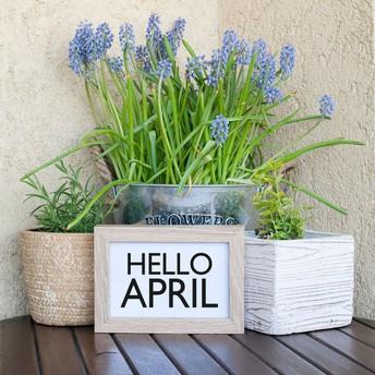 Hello, April!