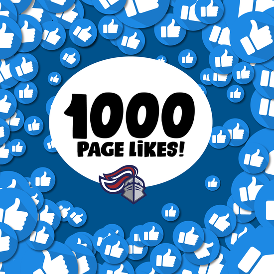 1,000 FB PAGE LIKES