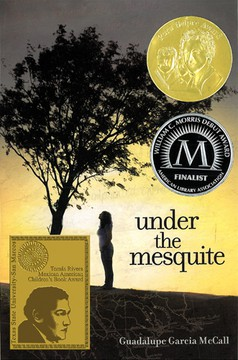 """Under the Mesquite"" by Guadalupe Garcia McCall"