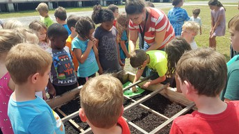 Wild About the Learning Garden