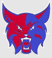 Wildcat Choice #4