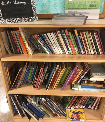 Sustainability Corner: Arleta's Little Library