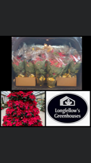 Thank you PTO and Longfellow's Greenhouses!