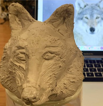 From Reference Photo to Real-Life Wolf