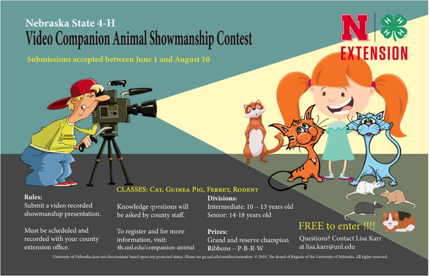 More information about the contest can be found here: https://4h.unl.edu/companion-animal/showmanship-contest.