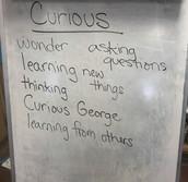 Scholar Skill-Curious
