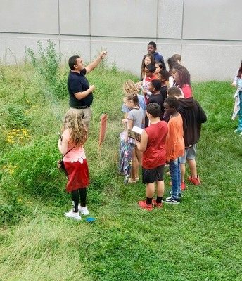 Science lesson in our natural grass area!