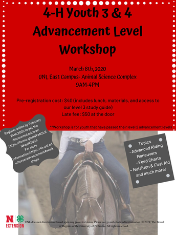 4-H Youth 3 & 4 Advancement Level Workshop