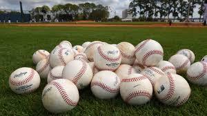 Wildcat Baseball Tryouts