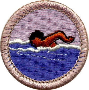 Swimming Sessions for Rank Requirement AND Swimming Merit Badge
