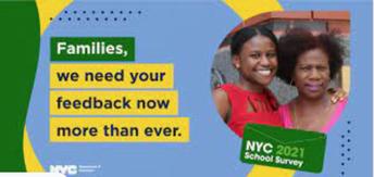 NYC School Survey