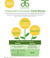 Consultant Cash Bonus