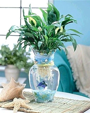 The Fish Tank With Plants On Top Case Study You Will Never Forget
