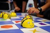 F2F #2: Bee Bots Playground