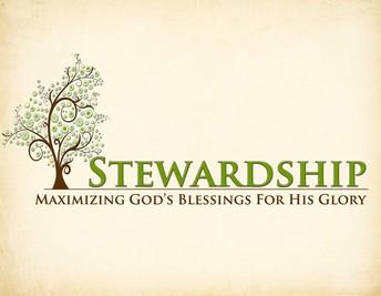 STEWARDSHIP NOTE