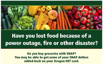 SNAP Replacement Benefits