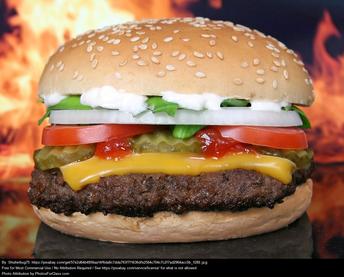 May 28th  -  National Hamburger Day!