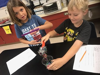 2nd grade magnet science lab fun!