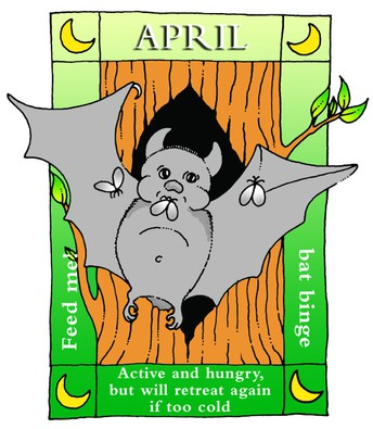 Bats are on their way!