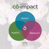 C0-Impact Sourcing