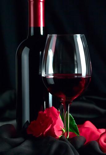 Wine Fridge Cooler