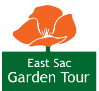 VIRTUAL Mother's Day Garden Tour