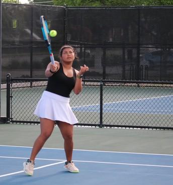 Ruchika Khowala--Regional Semi-Finalist