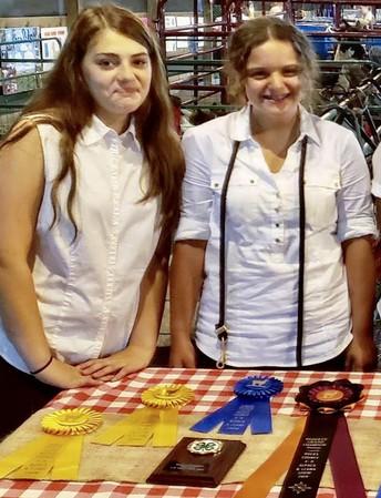 Strayer students win ribbons at Grange Fair